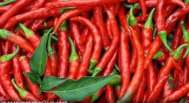 最新研究表明:吃辣椒或能降低死亡风险